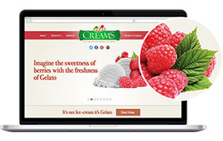 web design and development  MrCream
